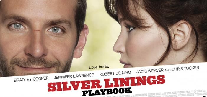 joseph a hazani silver lining s playbook movie review a dilettante